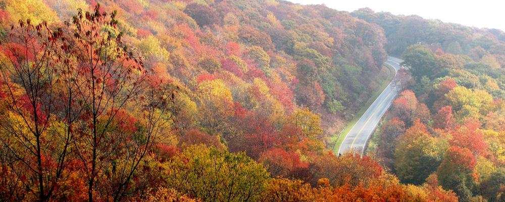 Nuevas promociones de otoño en Repara Tu Vehículo
